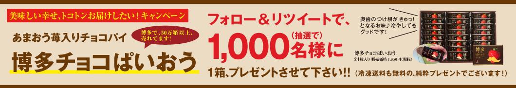 ぱいおう1,000個プレゼント企画